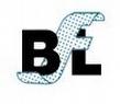 Bridgwater Filters Ltd. by