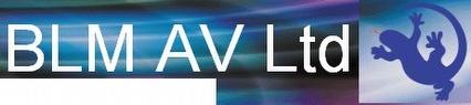Blue Lizard Media AV Ltd. Logo
