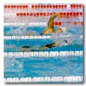 Swimming Pool Lane Lines by POW Sport & Leisure Co.