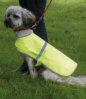 Branded Promotional Dogs Vests by Positive Branding