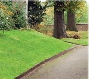 EverEdge ProEdge Landscape Garden Edging by EverEdge