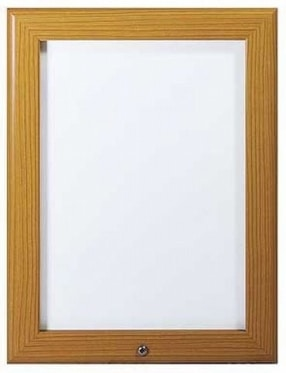 Premium Lockable Snap Frames by Park Lane Displays